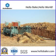 Hello baler Hydraulic Press Semi-Automatic Straw Baler Hmst3-1