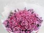 florist2flower花淘花店